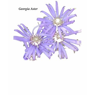 Georgia Aster zazzle_shirt