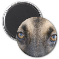 German Shepherd Fridge Magnets