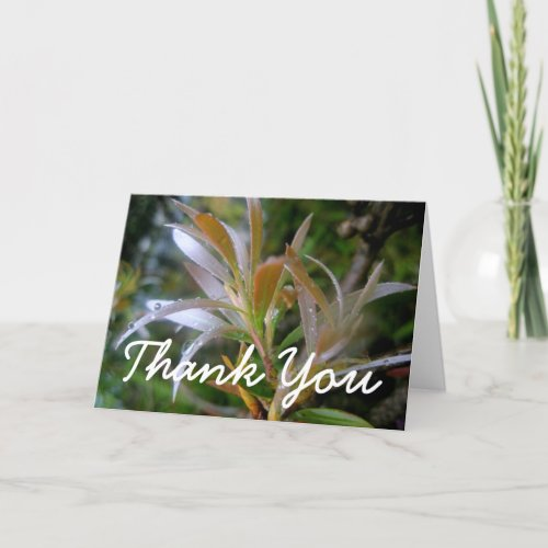 Glittering rain thank you card
