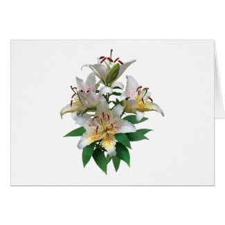 Graceful White Lilies card