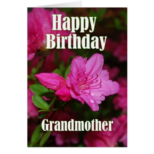 Grandmother Pink Azalea Happy Birthday Card
