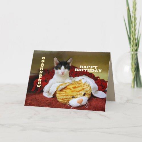 Grandnephew Happy Birthday Kitten with Toy Tiger card
