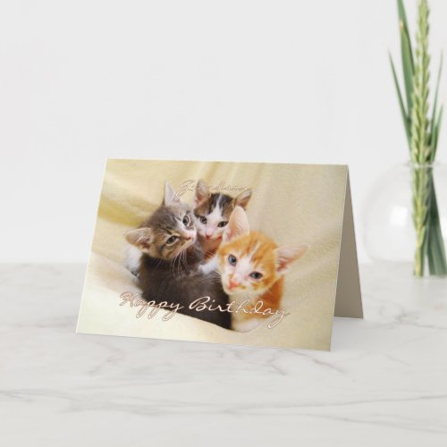 Grandson Happy Birthday Trio of Kittens card