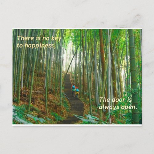 Green Bamboo Forest postcard