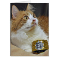 Greyfoot Cat Rescue New Years Greeting Card