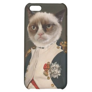 Grumpy Cat Classic Painting Case For iPhone 5C