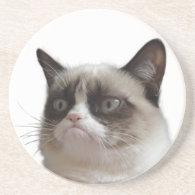 Grumpy Cat Glaring Coasters