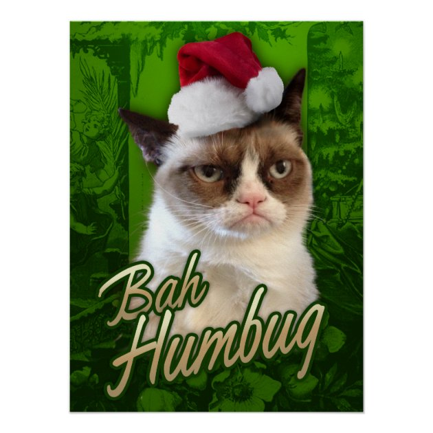 Grumpy Cat Merry Christmas Bah Humbug Poster Zazzle