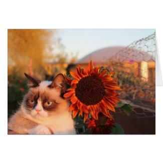 Grumpy Cat Sunflower Note Cards