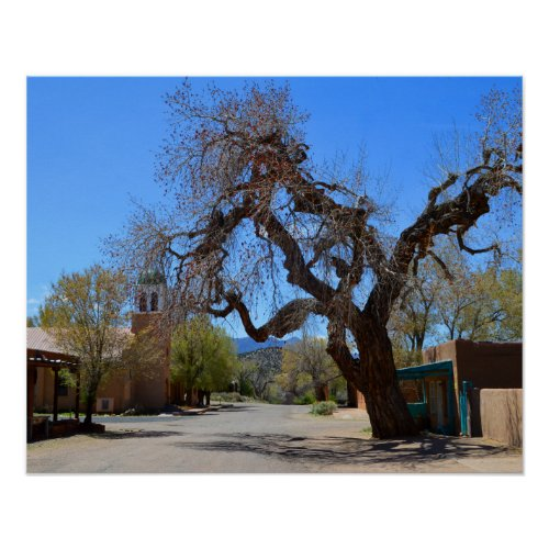 Hanging Tree, Cerrillos, New Mexico Posters