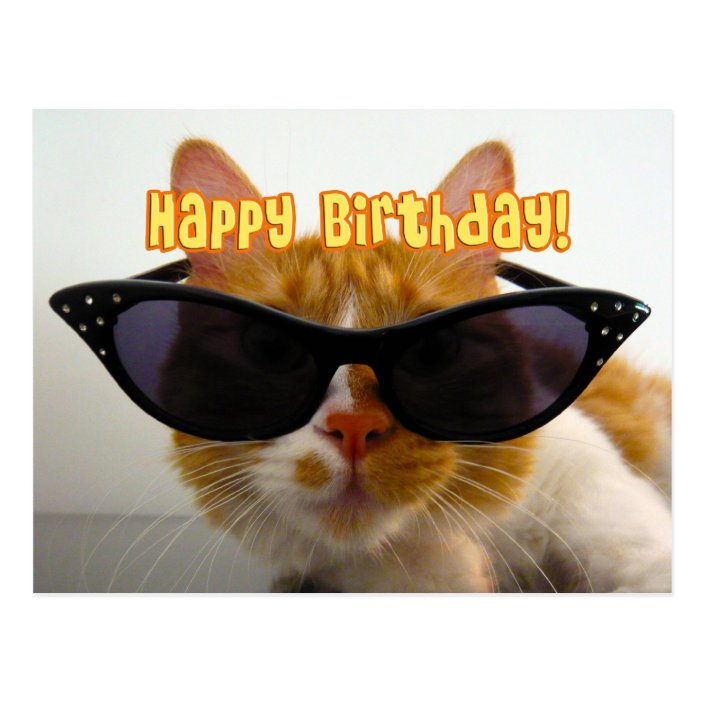 Cat Birthday Greetings To Him Funny Cat Man Purr Day Memes Guy B