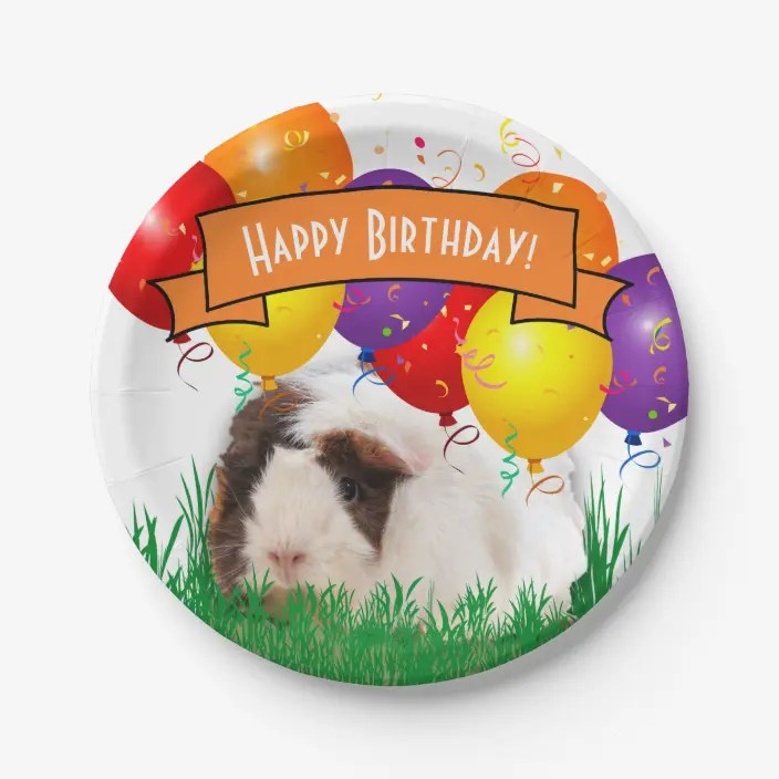 Happy Birthday Cute Guinea Pig Party Balloons Paper Plate Zazzle Com