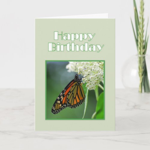 Happy Birthday Monarch Butterfly on Swamp Milk card