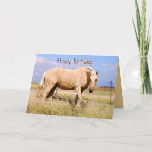 Happy Birthday Palomino Horse Card card