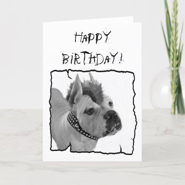 Happy Birthday White Boxer Punk Greeting Card Zazzle Com