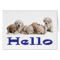 Hello Golden Retriever Puppy Dog Blank Card