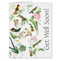 Hummingbirds Get Well Soon From All of Us Big Card