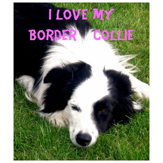 I love my Border Collie - Ladies Baby Doll Shirt shirt