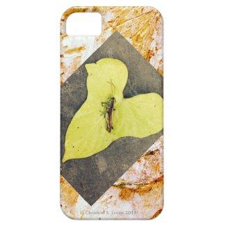 I-Phone 5/5S Case, Grasshopper