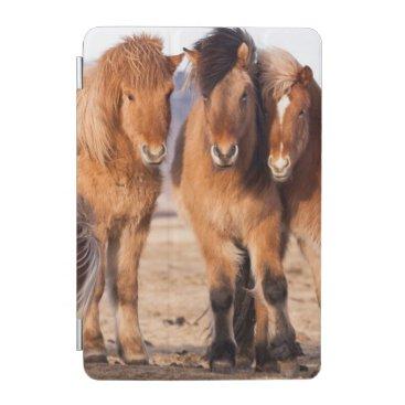 Icelandic Horse during winter iPad Mini Cover