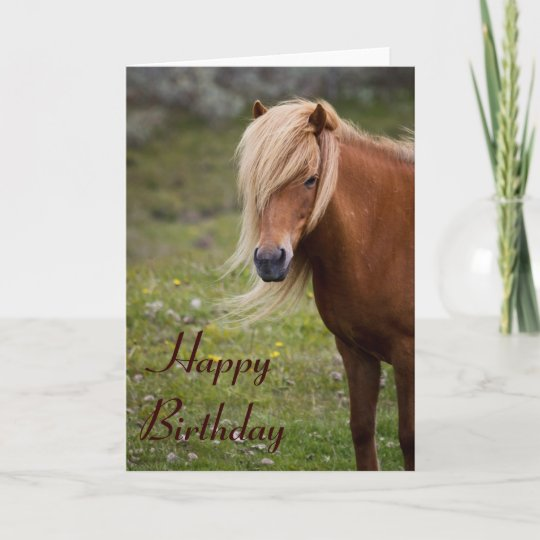 Shetland Pony Birthday Customised Card Greeting Cards Party Supply Home Garden