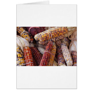 Indian Corn Maize Zea mays Cards