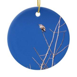Infant Wood Thrush Ornament ornament