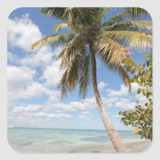 Isla Saona - Palm Tree at the Beach Sticker