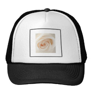 Ivory Rose Trucker Hat