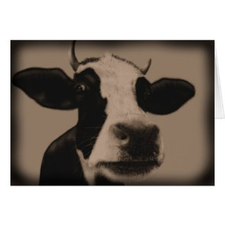 Just an old cow greeting card