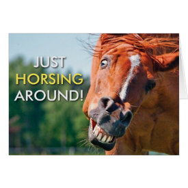 Just Horsing Around Horse Photograph Card
