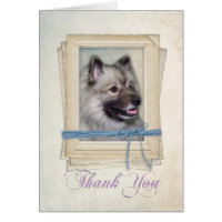Keeshond Thank You Card