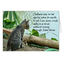 Kitten Greetings Card with Quote