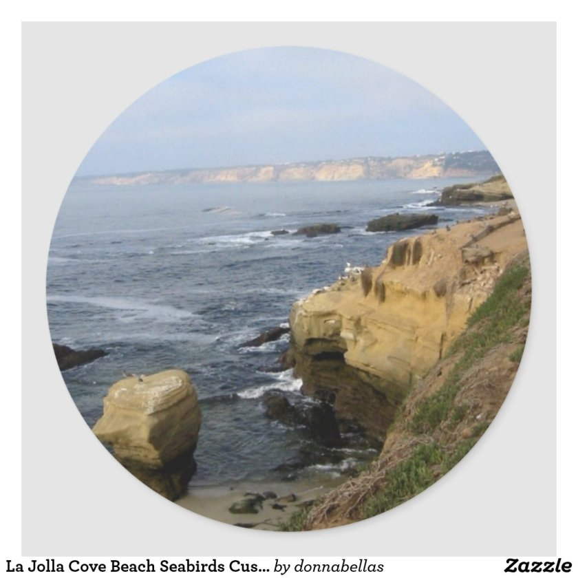 La Jolla Cove Beach Seabirds Custom Decal Stickers
