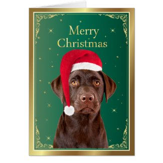 Labrador Retriever dog merry christmas card