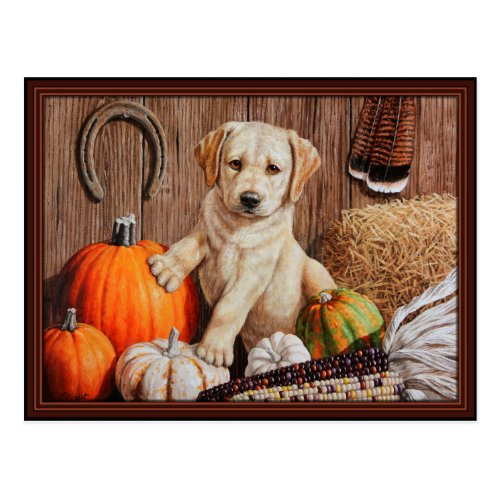 Labrador Retriever Puppy and Pumpkins Postcard