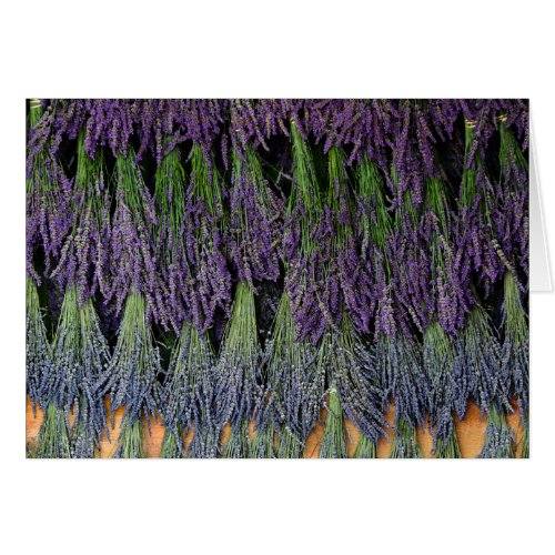 Lavender on Drying Rack Greeting Card