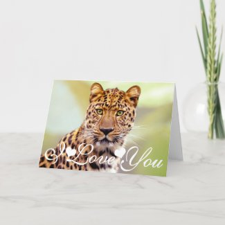 Leopard Photograph Image I Love You Card