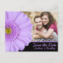 Lilac Daisy Photo Wedding Save the Date Postcard