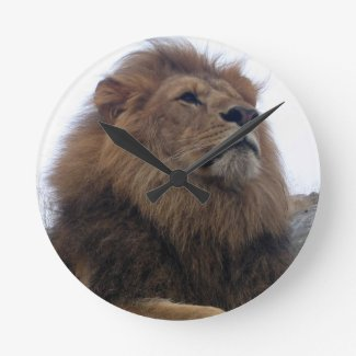 Lion - wall clock