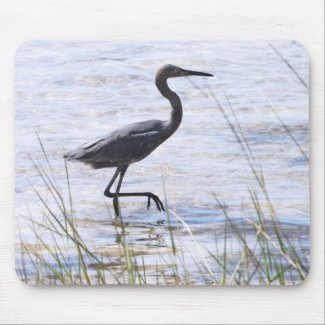 Little Blue Heron, Version B, Mousepad mousepad