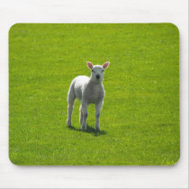 Little Lamb mousepads