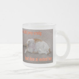 LOL CAT: ai calld jeny craig-but den ai eeted her Frosted Glass Coffee Mug