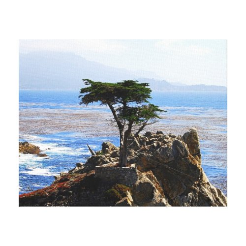 Lone Cypress, Monterey, California Canvas Print