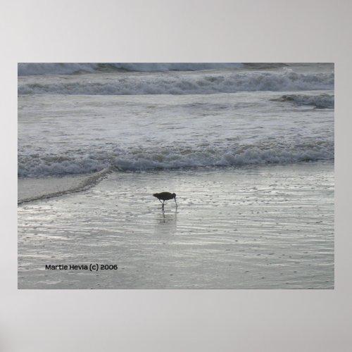 Lone Sandpiper at Watsonville Beach zazzle_print
