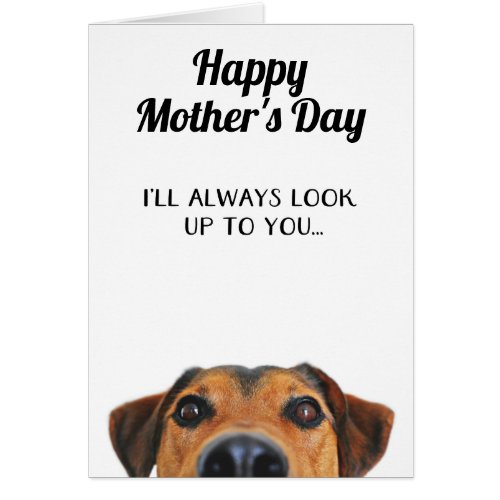 Look Up To You Funny Mother's Day Card From Dog