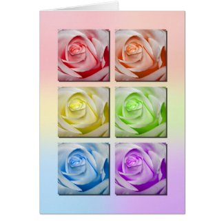 Macro Rainbow Roses card