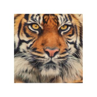 Male Siberian Tiger Paint Photograph Wood Wall Decor