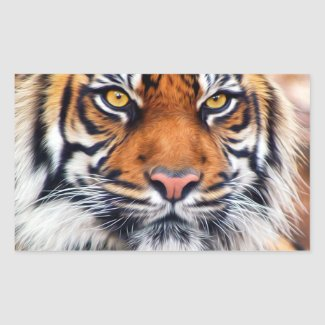 Male Siberian Tiger Rectangular Stickers