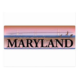 Maryland Chesapeake Bay Scene Postcard